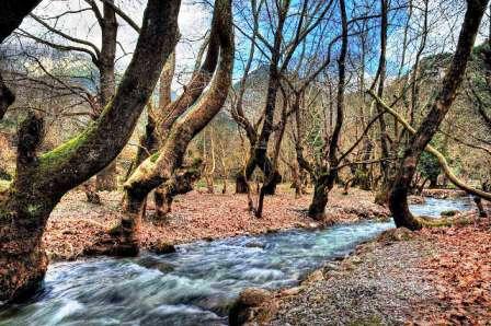 Το παραδοσιακό χωριό Πλανητέρο στα Καλάβρυτα με τις πιο νόστιμες πέστροφες