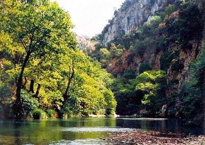 To Εθνικό Πάρκο Χελμού - Βουραϊκού είναι ένας βοτανικός παράδεισος, όπου απαντώνται περίπου 1.500 είδη φυτών.